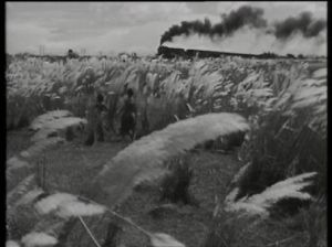 A still from Pather panchali - Satyajit Ray.